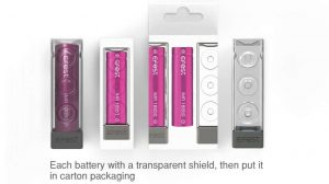 Efest battery packaging with plastic box