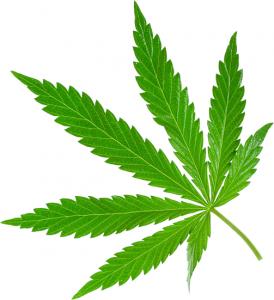 THC Leaf - Vaping