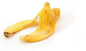 Banana Picture Out of stock
